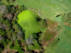 green landscape from above